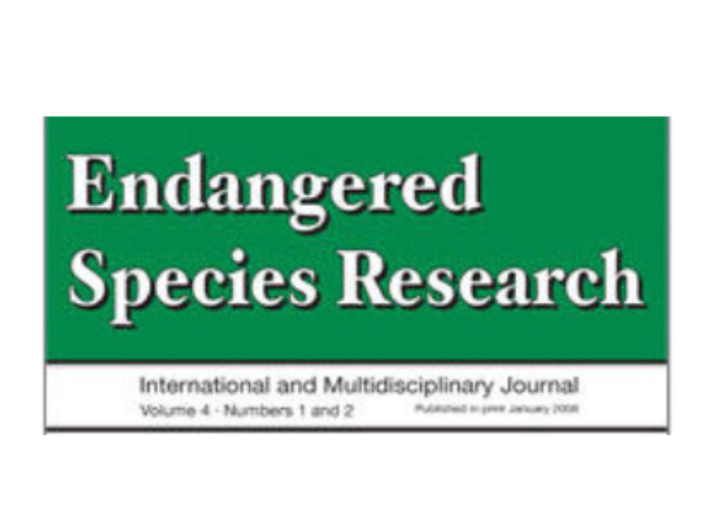 Survival of reintroduced pygmy slow loris Nycticebus pygmaeus in South Vietnam